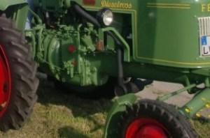 Bulldog-300x198