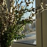 Frühlingsstimmung zum Steckerlfischgrillen am Karfreitag