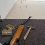 Geschossen wurde wie üblich mit Knickluftgewehr und Dartpfeilen.